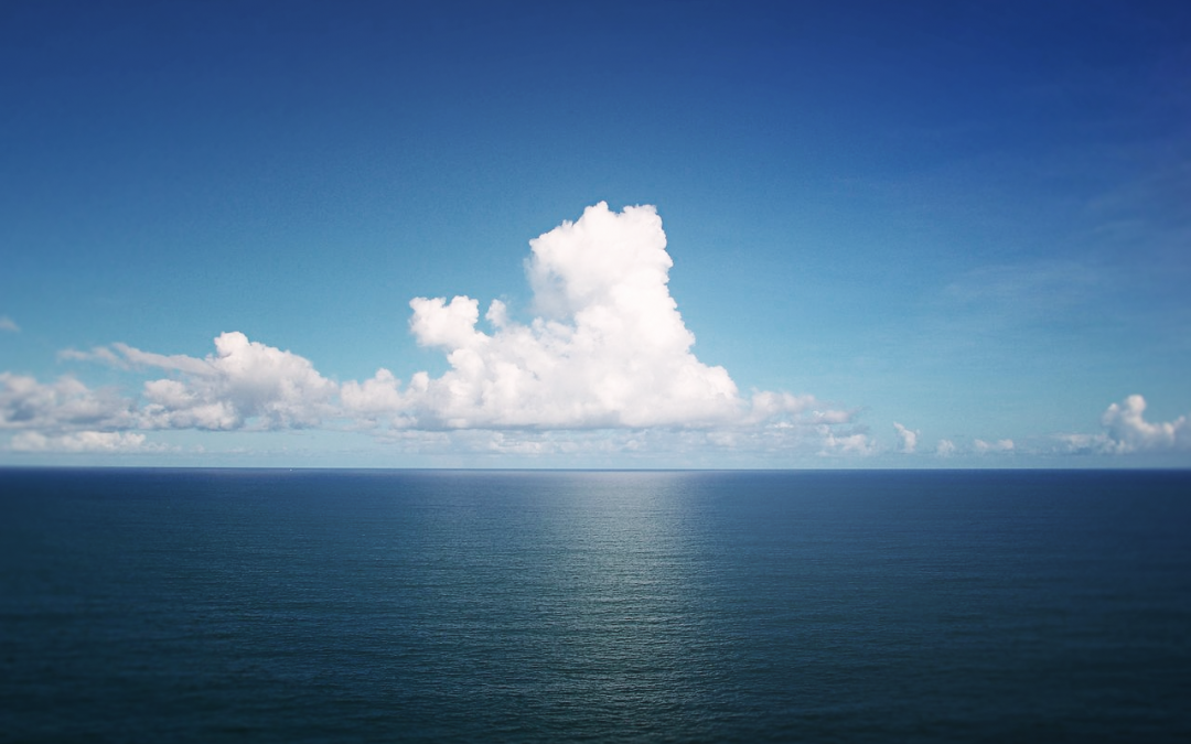The Digital Ocean: Our Next Information Frontier